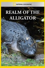 National Geographic Realm Of The Alligator