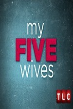 My Five Wives: Season 1