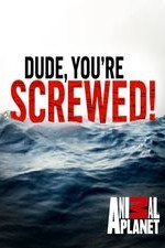 Dude, You're Screwed: Season 1