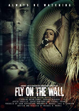 Fly On The Wall