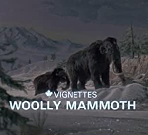 Canada Vignettes: Woolly Mammoth
