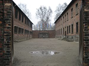 Made In Auschwitz: The Untold Story Of Block 10