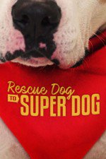 Rescue Dog To Super Dog (us): Season 1