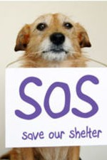 Save Our Shelter: Season 1