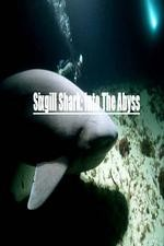 National Geographic Wild Sixgill Shark Into The Abyss