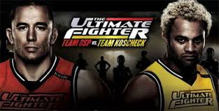 The Ultimate Fighter: Season 14