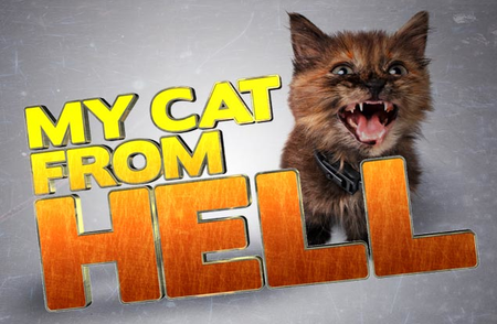 My Cat From Hell: Season 2